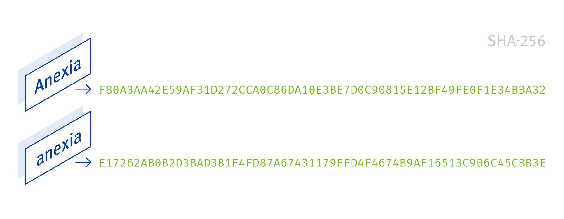 Blockchain Hash Funktion